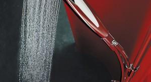 Ścienna bateria plus jednopunktowa lub przesuwna słuchawka to tradycyjny zestaw prysznicowy. Ten duet można jednak zastąpić innymi rozwiązaniami, które codziennemu, higienicznemu natryskowi przydadzą aury wellness, a wnętrzu kabiny i ca