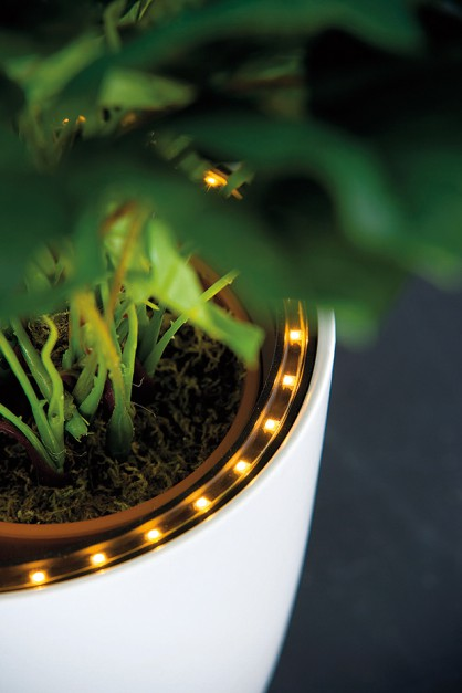 Paulmann dioda LED
