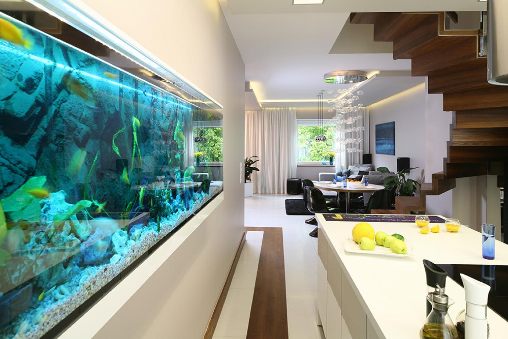 Przyrządzając posiłki można obserwować podwodny świat w 300-litrowym akwarium, znajdującym się w specjalnie przygotowanej wnęce w ścianie. Jest ono imitacją biotopu afrykańskiego jeziora Malawi. Fot. Bartosz Jarosz.