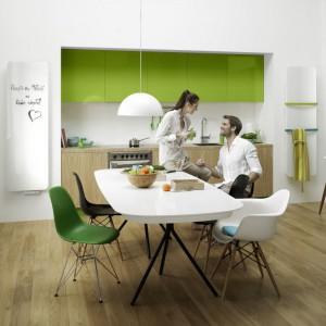Grzejnik centralnego ogrzewania INDIVI NEW (Instal-Projekt Gawłowscy Ścierzyńscy Sp.j.) - tytuł Dobry Design 2014