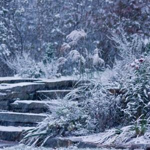 Fot. Kenskitchen Garden.