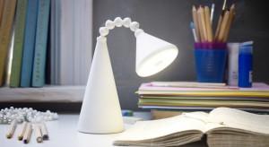 Chcesz, aby twoje biuro wyróżniało coś wyjątkowego? Wyposaż je w designerską lampkę. Oświetli miejsce pracy i nada mu wyjątkowy charakter.