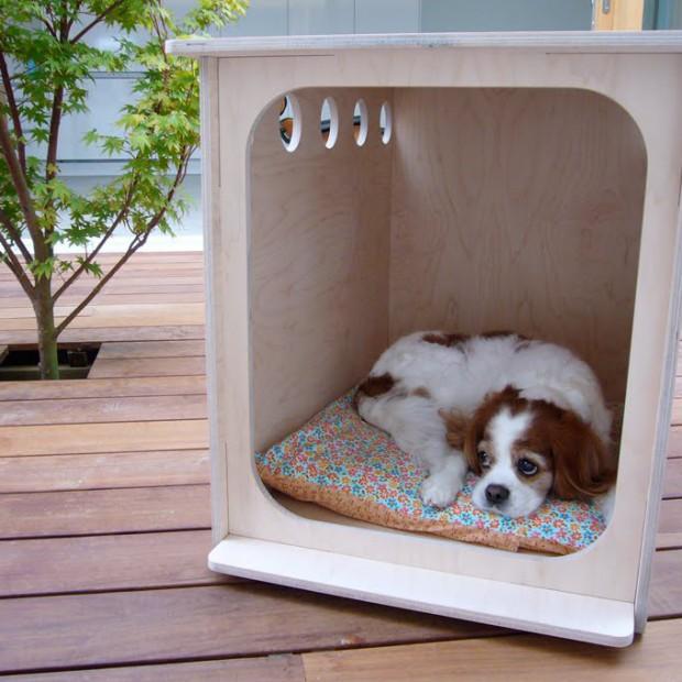 Budy dla psów. Cz. II – nietrafione pomysły