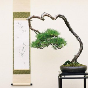 Styl Bunjingi (styl literacki) - formowanie rzadkich gałązek w 2/3 wysokości drzewa, niekonwencjonalna kompozycja. Pochylone wierzchołki drzew, gałęzie okrążające pień lub krzyżujące się z nim – to najbardziej charakterystyczne cechy tego stylu.