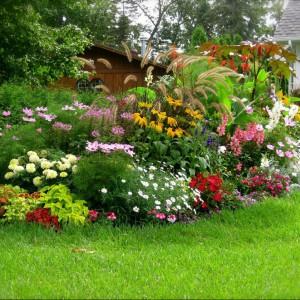 Zdobądź wiedzę na temat warunków jakie są potrzebne do pięknego wzrostu roślin. Fot. Evtiel.
