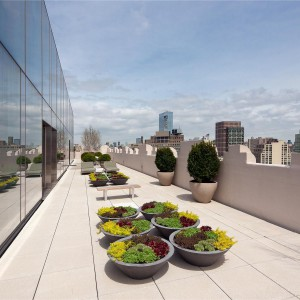 Taras liczy ponad 400 m2. Fot. Douglas Elliman Real Estate.