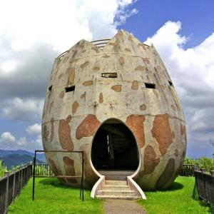 Banna Park Birdwatch. Okinawa, Japonia. Proj. Jackie Craven
