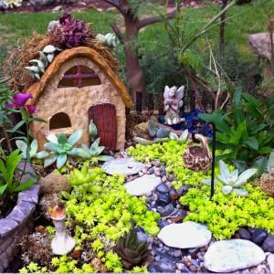 Fot. Gardencentertv