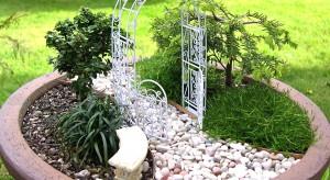 Miniaturyzacja jest bardzo popularnym zabiegiem w wielu dziedzinach. Dziś przedstawiamy ogrody zajmujące powierzchnię nie przekraczającą 1m2.