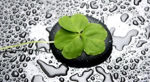 Tego dnia zieleń królujeniemal w każdej sferze życia. Obowiązuje zielony strój, łyk orzeźwiającej whisky lub barwionegopiwa.