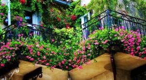 Szukasz pomysłów, dzięki którym Twój balkon stanie się miejscem spotkań rodzinnych i strefą relaksu? Wystarczy kilka prostych metod.