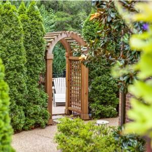 Fot. Gardenvarietynews