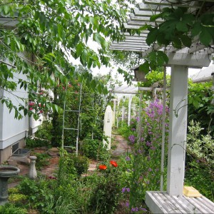 Fot. Dakota Garden