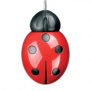 Myszka w kształcie biedronki, czy biedronka w kształcie myszki? Fot. Czerwona Maszyna.