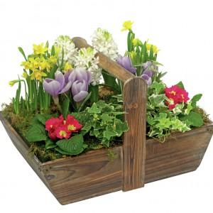 Drewniana skrzynka z kwiatami może zastąpić ogródek. Fot. Marks and Spencer.