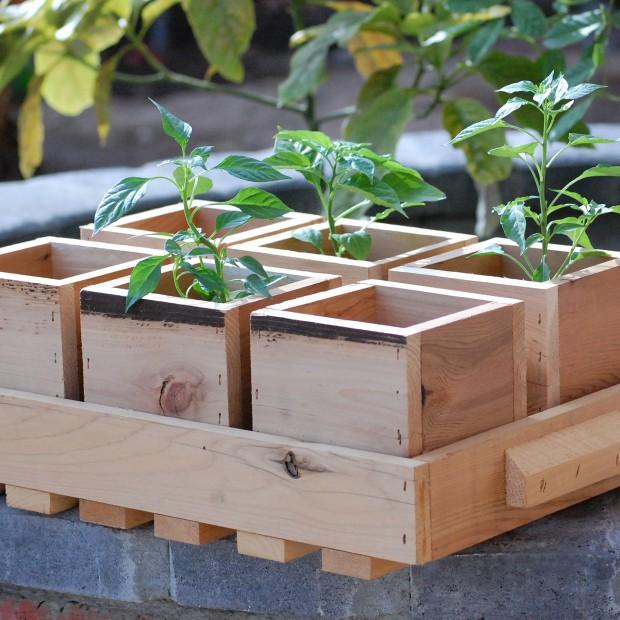 Zrób to sam! 30 pomysłów na dekoracje ogrodowe