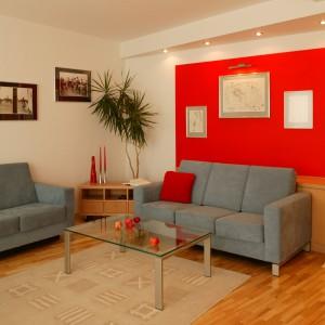 Niewielki fragment ściany pomalowany na czerwono może istotnie odmienić wygląd salonu. Projekt: Agnieszka Kozłowska. Fot. Archiwum Dobrze Mieszkaj.