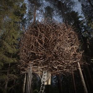 Z zewnątrz dom wygląda jak gniazdo ptaka - nie bez powodu nazywa sie Bird's Nest. W środku mieści wygodne mieszkanko dla pary z dwójką dzieci. Fot. Tree Hotel, Szwecja.