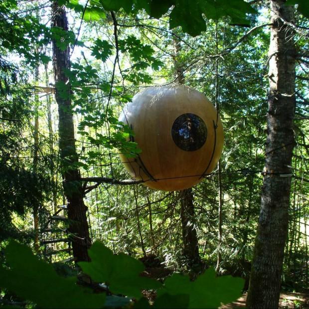 10 zadziwiających domów na drzewie
