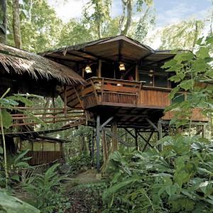 Dom na drzewie dla miłośników bardziej egzotycznych pejzaży. Ten znajduje się na Kostaryce, zbudowano go w lesie deszczowym na palach, a w środku skrywa dwie wygodne sypialnie, łazienkę, a nawet kuchnię. Do wynajęcia. Fot. Costarica Tree House.