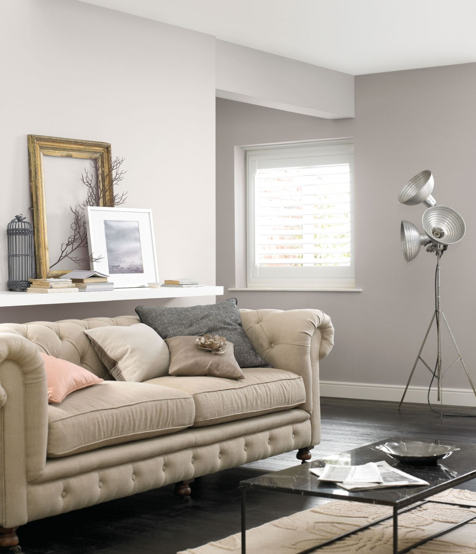 Pale Grey Wall Paint