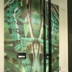 Przepiękny kameleon przegląda się w lustrze. W tej niedużej toalecie gościnnej stanowi niesamowity motyw dekoracyjny. Projekt Katarzyna Mikulska-Sękalska. Fot. Bartosz Jarosz.