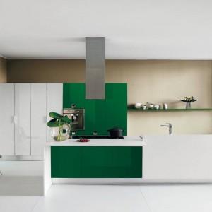 Meble do kuchni z kolekcji Cruz firmy Harte. Fronty w zielonym kolorze w połączeniu z bielą tworzą eleganckie, nowoczesne połączenie.