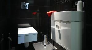 Toaleta gościnna to pomieszczenie niezwykle reprezentacyjne. Zazwyczaj jednak cechuje ją niewielka przestrzeń. Jak więc urządzić małą łazienkę by była nie tylko ładna, ale i funkcjonalna? Zobaczcie garść inspiracji prosto z polskich domów.