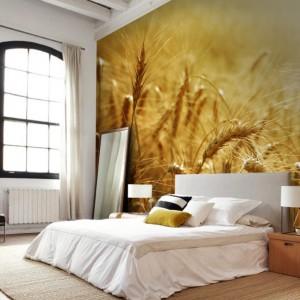 Fototapeta ze słonecznymi źdźbłami pszenicy. Ciepła i przytulna. Fot. Picassi.
