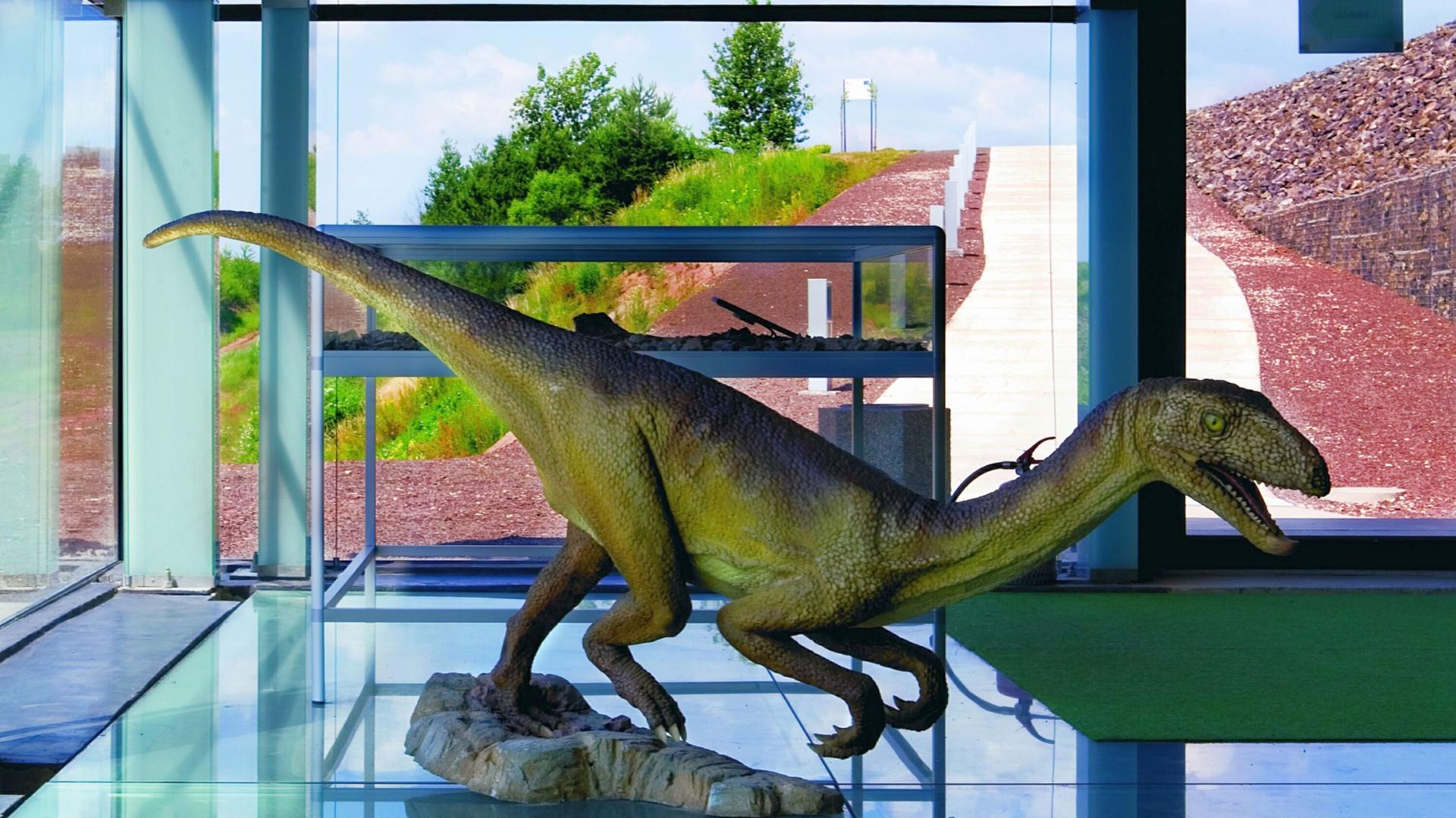 Dinopark w Krasiejowie Fot. Monika Filipiuk.jpg