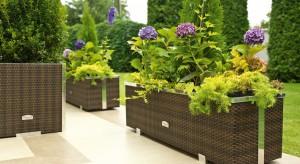 Donice i doniczki ogrodowe stanowią ozdobę tarasów, balkonów, ogrodów. Dzięki nim możemy stworzyć ciekawą aranżację przestrzeni, dzięki wyeksponowaniu ulubionychkwiatów i roślin.