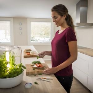 KitchenGarden to ciekawa propozycja dla miłośników świeżych ziół przez cały rok. Urządzenie pełni rolę miniaturowej szklarni. Wewnątrz szklanej bryły znajduje się kilka doniczek z roślinami, oświetlenie w postaci diod LED oraz specjalny system nawadniania. Cena w trakcie ustalania, Fiskars. Fot. Fiskars.