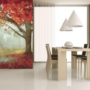 Nostalgicznie, magicznie i kolorowo. Fototapeta z motywem jesieni w pięknej palecie czerwieni. Fot. Evolution.