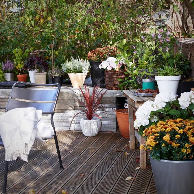 Jesienne dekoracje ogrodu