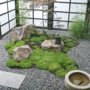 Mech, kamienie, żwir, paprocie to elementy, które często możemy spotkać w japońskim ogrodzie. Fot. Garden Mentors.
