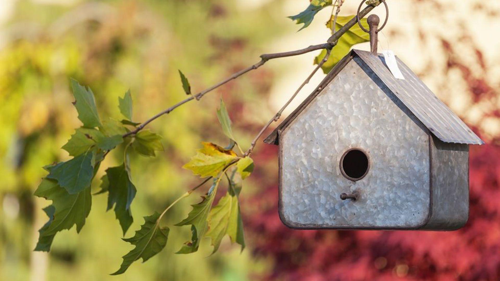 Domek wykonany z metalu zapewni odpowiednie schronienie dla ptaków, jednocześnie stanie się ciekawą dekoracją ogrodu. Wymiary:  33cm x 30cm x 18cm. Fot. Sodo.