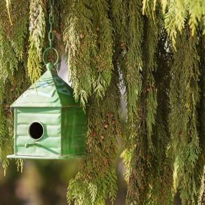 Zielona, metalowa budka dla ptaków doskonale sprawdzi się zarówno w ogrodzie jak i na tarasie. Fot. Sodo.