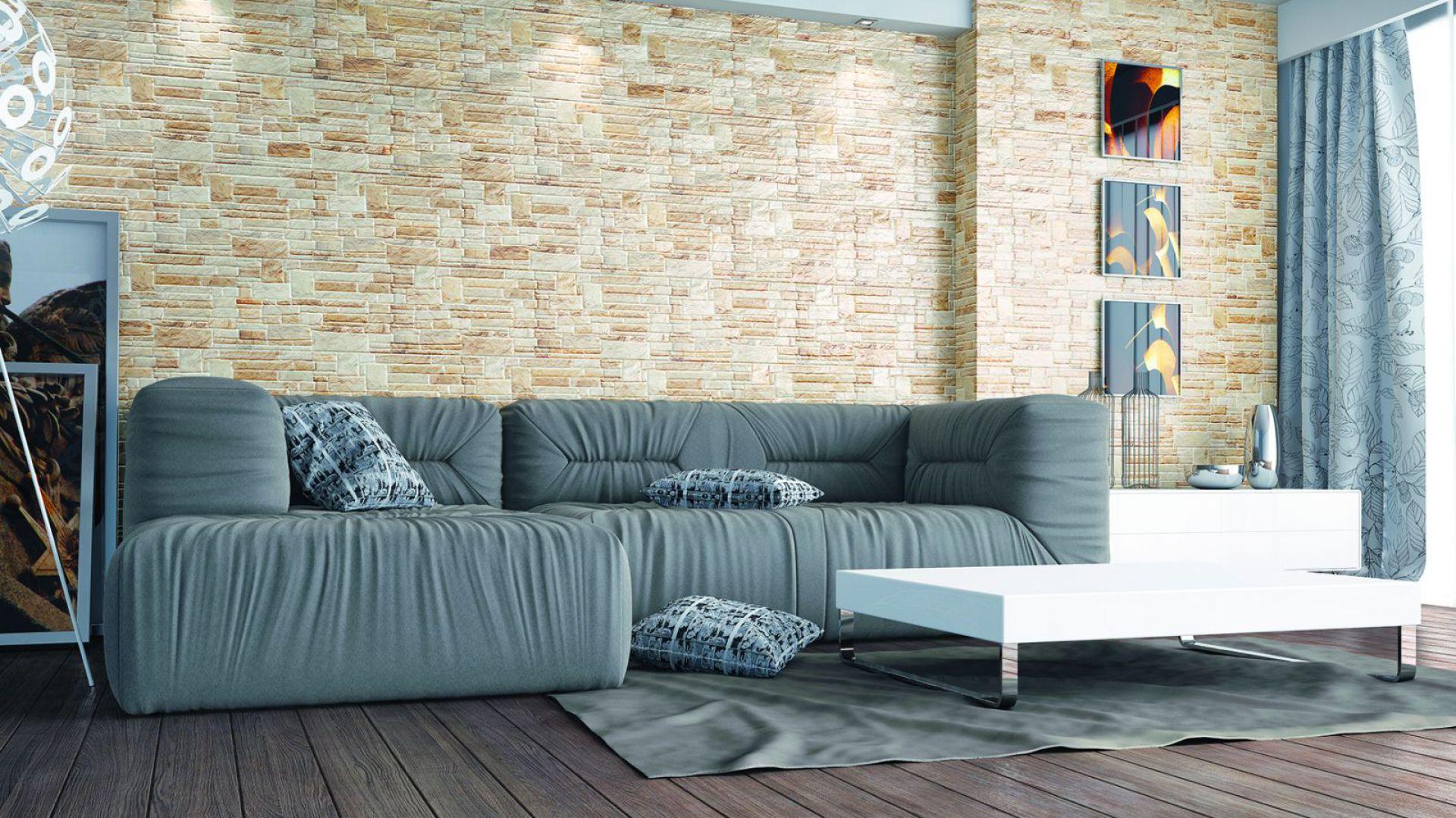Kamień elewacyjny Canella Desert marki Cerrad sprawdzi się zarówno w nowoczesnym, jak i klasycznym salonie. Wymiary: 490x300x10 mm. Fot. Cerrad.