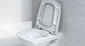 Żadnych bakterii, łatwe utrzymanie sedesu w czystości i mniejsza ilość wody zużywanej do spłukiwanie to podstawowe zalety sedesów bezrantowych. Jak je odróżnić od klasycznych sanitariatów?