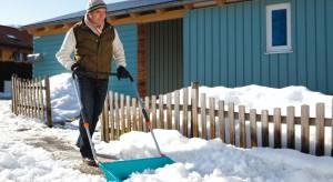 Zimą prac w ogrodzie jest niewiele, ale nie możemy zapominać o niezbędnych czynnościach: ochronie roślin przed mrozem czy dokarmianiu ptaków.
