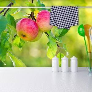 Żywa fototapeta z motywem rumieniących się jabłek na tle zielonego sadu. Piękne, intensywne kolory kontrastują efektownie z białym blatem kuchennym. Kolorowym akcentem są także akcesoria. Fot Livingstyle.