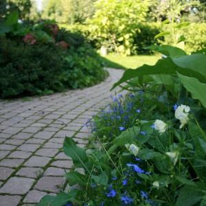 W ogrodzie powinniśmy zaplanować ścieżki. Do wyboru mamy wiele materiałów: kostkę brukową, drewno, kamień. Przed wyborem konkretnej powierzchni powinniśmy zapoznać się ze sposobem jej pielęgnacji i konserwacji. Fot. Libet.