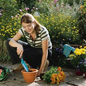 Przy roślinach doniczkowych należy pamiętać o ich przesadzaniu. Częstotliwość przesadzeń powinniśmy dostosować do gatunku rośliny oraz tempa jej wzrostu. Fot. Gardena.