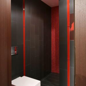 W głębi pomieszczenia znajduje się wnęka prysznicowa oddzielona od reszty ścianką działową. Projekt: Małgorzata Szajbel-Żukowska, Maria Żychiewicz. Fot. Bartosz Jarosz.