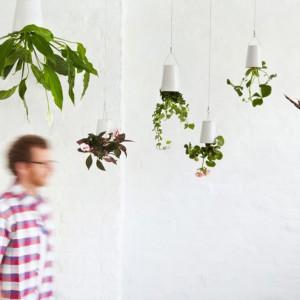 Doniczki Boskke montowane do sufitu stanowią ciekawą alternatywę dla tradycyjnych rozwiązań. Fot. Boskke.