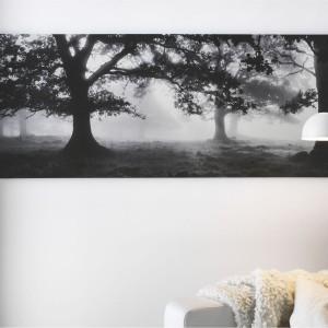 Drukowany na wysokiej jakości płótnie obraz autorstwa Björna Wennerwald zachwyca tajemniczością zamglonej polany z drzewami. Do kupienia w sklepie IKEA, rozmiar 140x56 cm, cena 149 zł. Fot. IKEA.