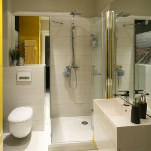 Łazienkę można wyposażyć w większą kabinę, jeżeli wybierzemy odpowiedni sposób otwierania drzwi: w tej łazience drzwi pod prysznic składają się płasko na ścianie podczas otwierania. Projekt: Dorota Szafrańska. Fot. Bartosz Jarosz.
