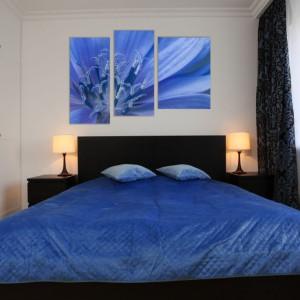 Inspiracja ze strony Demur. Niebieski kwiat w skali makro podzielony na tryptyk to doskonała dekoracja do romantycznej sypialni. Cena w zależności od wymiarów. Fot. Demur.