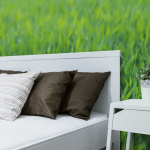 Z taka fototapetą za łóżkiem można poczuć się, jak na prawdziwej wiosennej, zielonej łące. Fot. Big Trix.