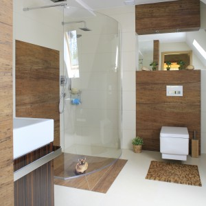 Stefa prysznica ma częściowo otwarty charakter. Wyznacza ją półotwarta tafla szkła, a wejście nie jest zamknięte drzwiami. Fot. Bartosz Jarosz.